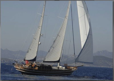 Magnificence-under-sail