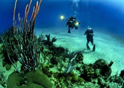 divers-681516_960_720