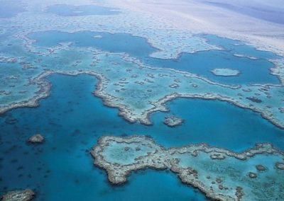great-barrier-reef-527987__340